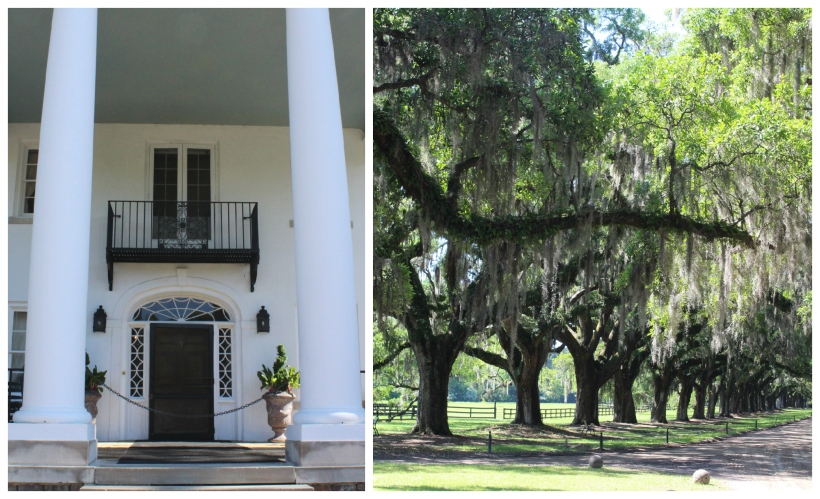 Boone Hall Plantation Collage